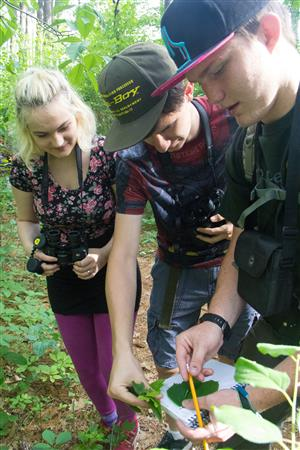 AFSA students identifying plants in the woods by AFSA.